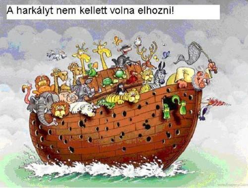 Noé bárkájának tizenegy nagy konzekvenciája című cikk borítóképe