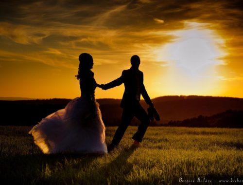 Nekem feleség kell – II. című cikk borítóképe