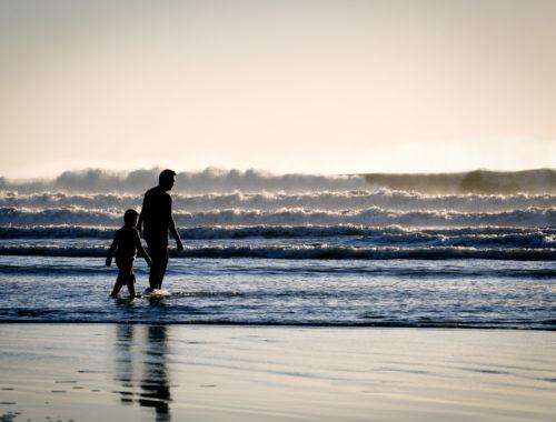 Az FR-FR titok – aktív apai előkészületek [Apa-Fia 3. rész] című cikk borítóképe
