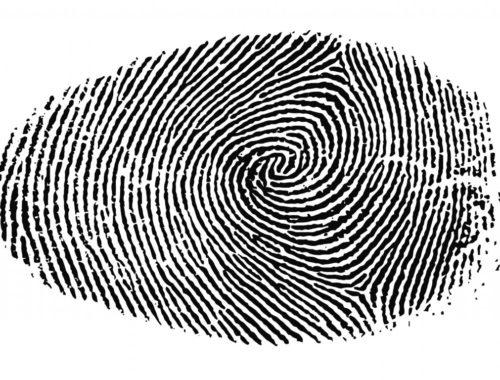 A számok nem hazudnak – Messiási próféciák című cikk borítóképe