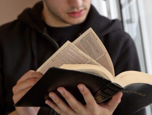 10 fun fact a Bibliáról című cikk borítóképe