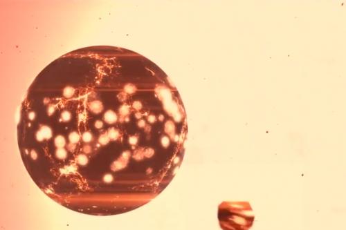 Így teremthette Isten a világot - csodálatos videó