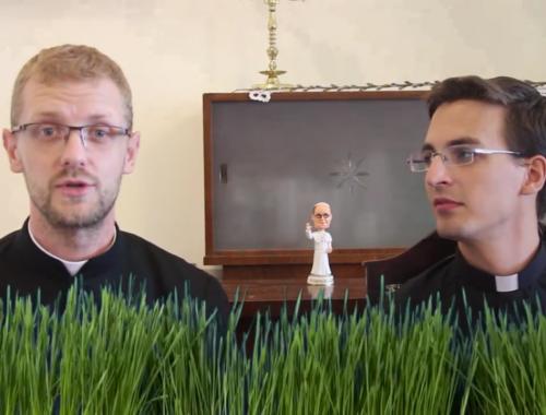 #papoktitkosélete – Kispap vs. nagypap – VIDEÓ című cikk borítóképe