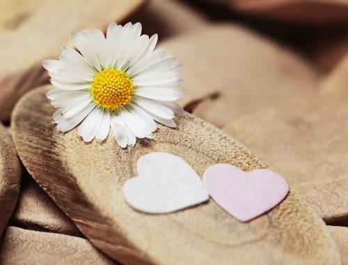 A szeretet engedelmes. Vagy mégsem?