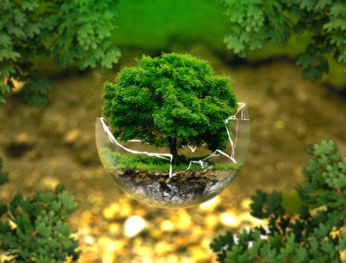 A környezetvédelem keresztényi kötelességünk